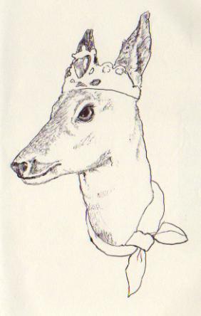 alexs deer